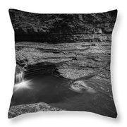 Spinning Leaves Bw Throw Pillow