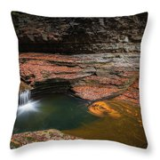 Spinning Leaves  Throw Pillow