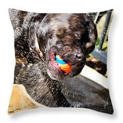 Spinning Out Throw Pillow