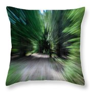 Spinning Through The Woods Throw Pillow
