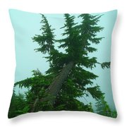 Spinning Up In A Twist Throw Pillow