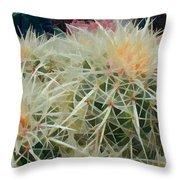 Spiny Barrel Cactus Throw Pillow