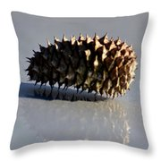 Spiny Reflections Throw Pillow