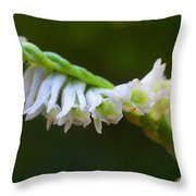 Spiral Ladies' Tresses Throw Pillow