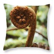 Spiral Tree Fern Throw Pillow