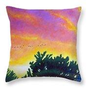 Spirit And Nature Throw Pillow