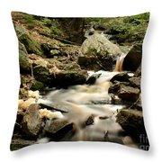 Spirit Falls - 1 Throw Pillow