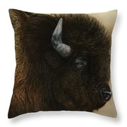 Spirit Of The Plains  Throw Pillow
