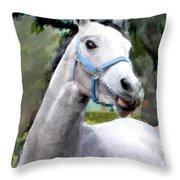 Spirited Grey Horse Throw Pillow