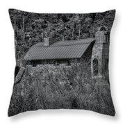 Spiritual Oasis 28 Throw Pillow