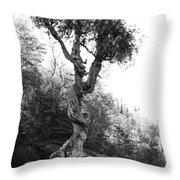 Spirt Tree Throw Pillow