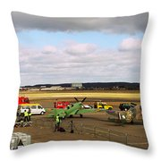 Spitfire's Galore Throw Pillow