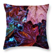 Splash Down Throw Pillow
