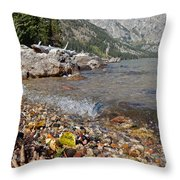 Splash Lake Jenny Throw Pillow
