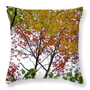 Splash Of Autumn Colors Throw Pillow