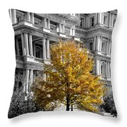 Splash Of Gold Throw Pillow