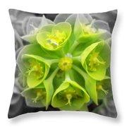 Splash Of Green Throw Pillow