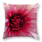 Splash Of Pink Throw Pillow