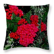 Splash Of Red Berries Throw Pillow