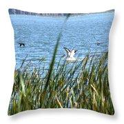 Splashing In The Lake Throw Pillow