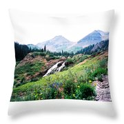 Splendid Wonder Throw Pillow