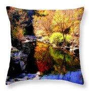 Splendor Of Autumn Throw Pillow