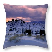 Splendor Of Winter  Throw Pillow