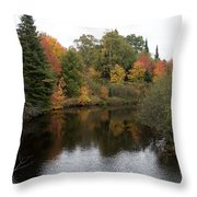 Splendor On A River Throw Pillow