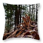 Splintered Hemlock Throw Pillow