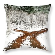 Split Decision Throw Pillow by Marilyn Hunt
