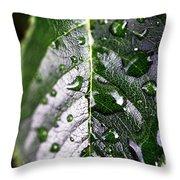 Split Leaf Throw Pillow