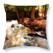 Split Rock River Throw Pillow
