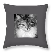 Spooleete. Cat Portrait In Black And White. Throw Pillow