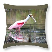 Spoonbill In The Pond Throw Pillow