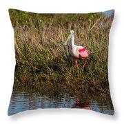 Spoonbill Island Hoping Throw Pillow