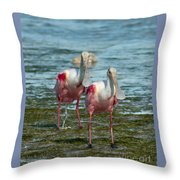 Spoonbills At The Shore Throw Pillow
