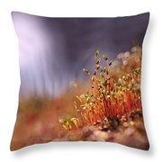 Sporophyte Colony Throw Pillow