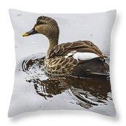 Spot-billed Duck  Throw Pillow