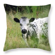 Spotted Cow In The Forest Throw Pillow