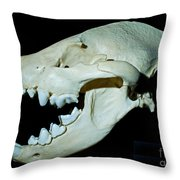 Spotted Hyena Throw Pillow