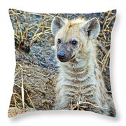 Spotted Hyena Pup In Kruger National Park-south Africa  Throw Pillow