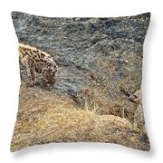 Spotted Hyena Pups In Kruger National Park-south Africa Throw Pillow