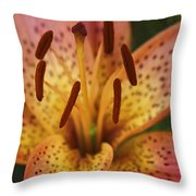 Spotted Lilly Throw Pillow