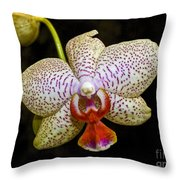 Spotted Orchid Throw Pillow