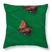Spotted Rays  Throw Pillow