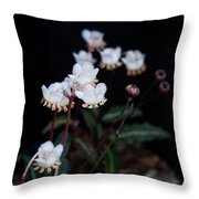 Spotted Wintergreen 5 Throw Pillow