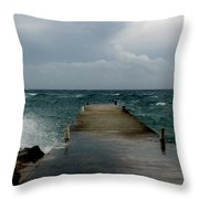 Spotts Landing Throw Pillow