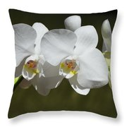 Spray Of Beautiful White Orchids Throw Pillow