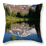 Spray Park Reflection Throw Pillow
