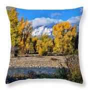 Spread Creek Grand Teton National Park Throw Pillow